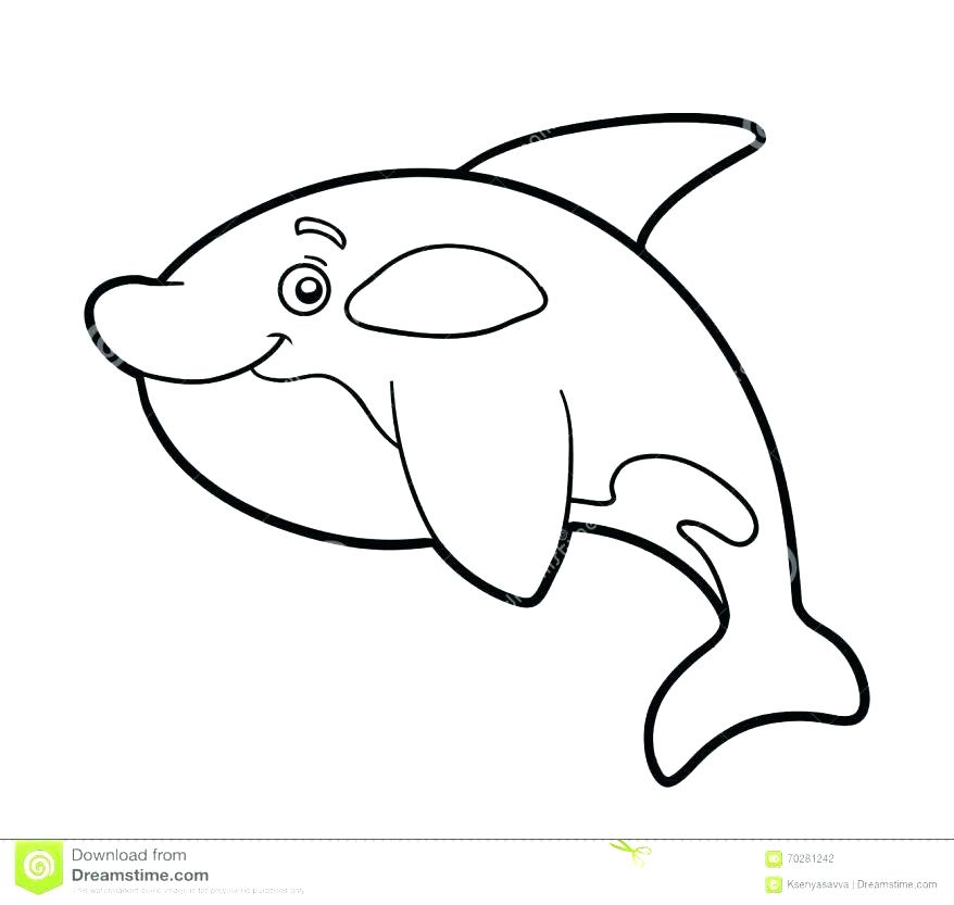 878x833 Beluga Whale Pictures To Color Best Collection Coloring Pages