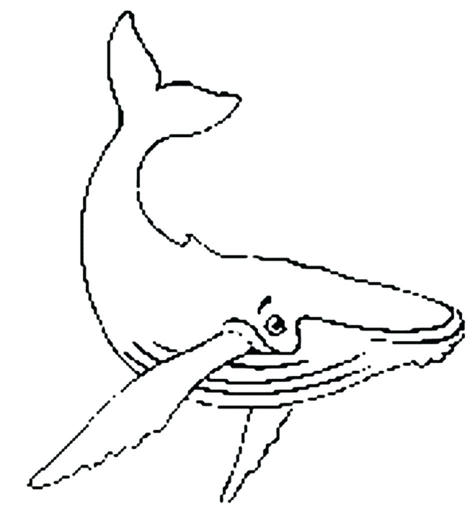 940x1015 Coloring Whale Coloring Beluga. Whale Coloring