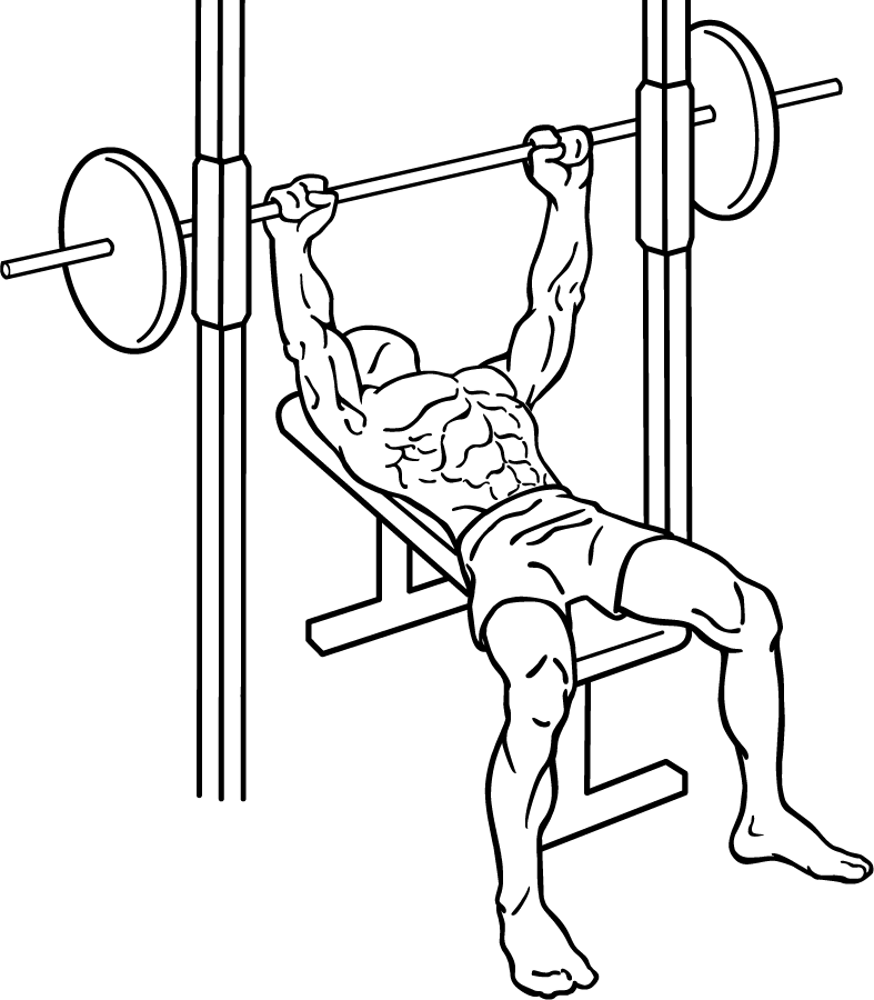 787x900 Filebench Press 3 1.png