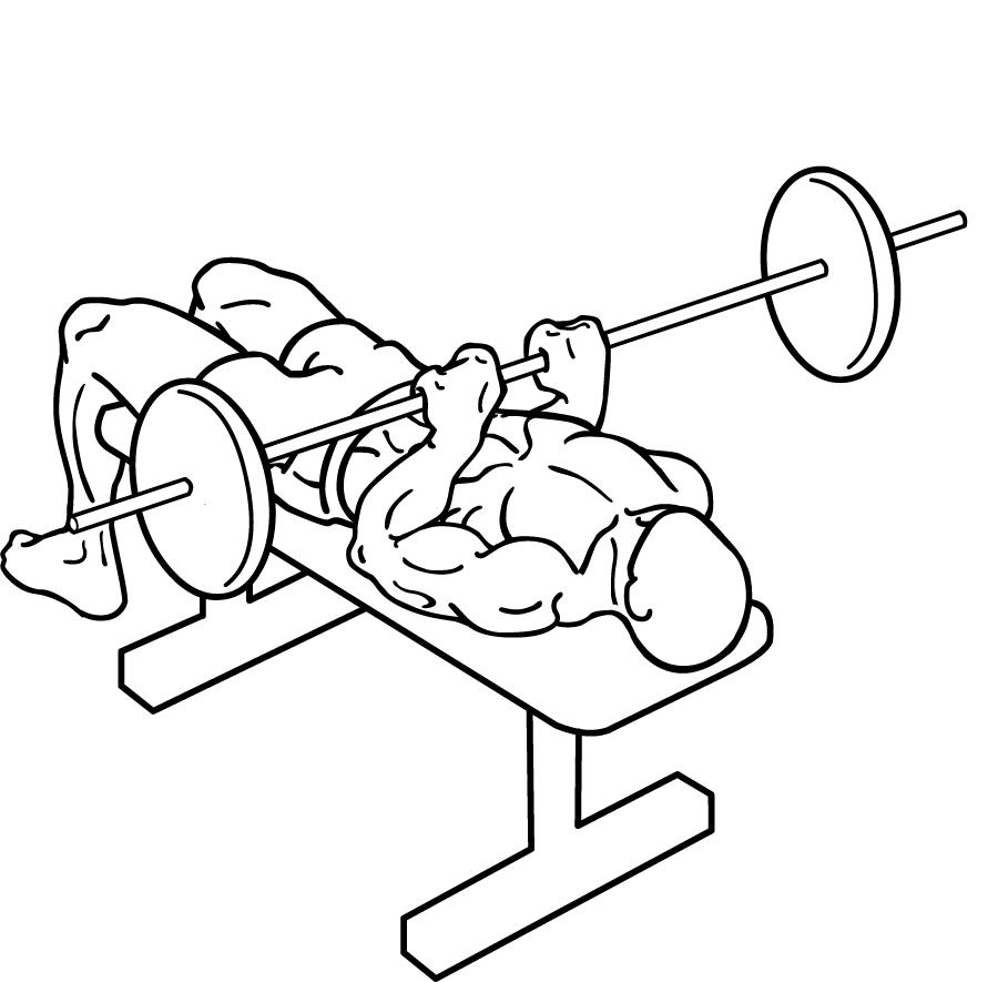 900x885 Close Grip Bench Press