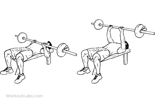 540x360 Close Grip Overhand Barbell Bench Press Workoutlabs