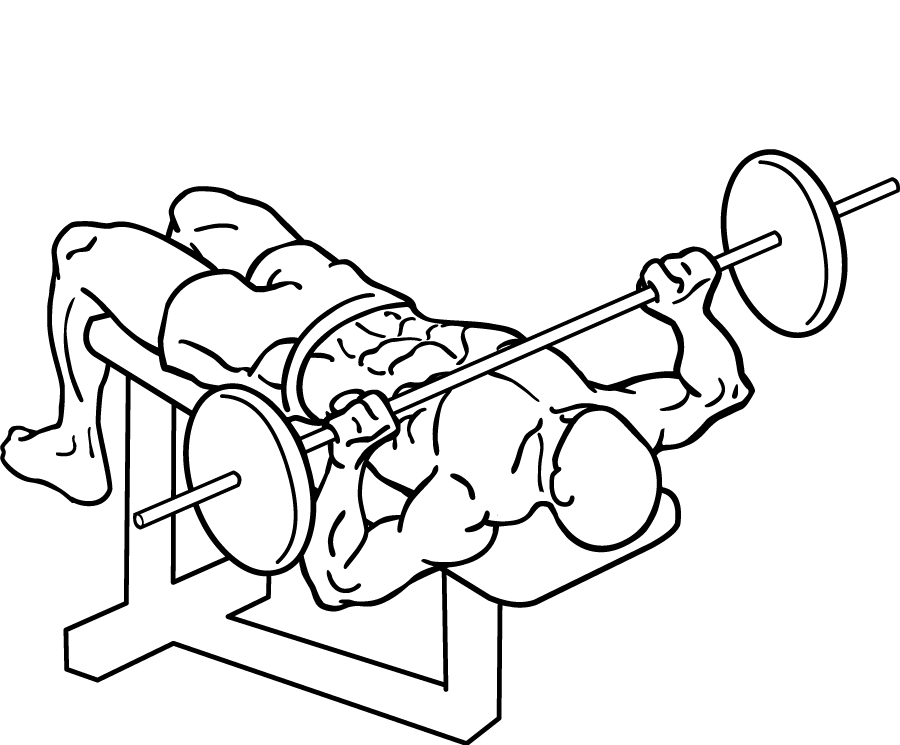 900x745 Filedecline Bench Press 2.png