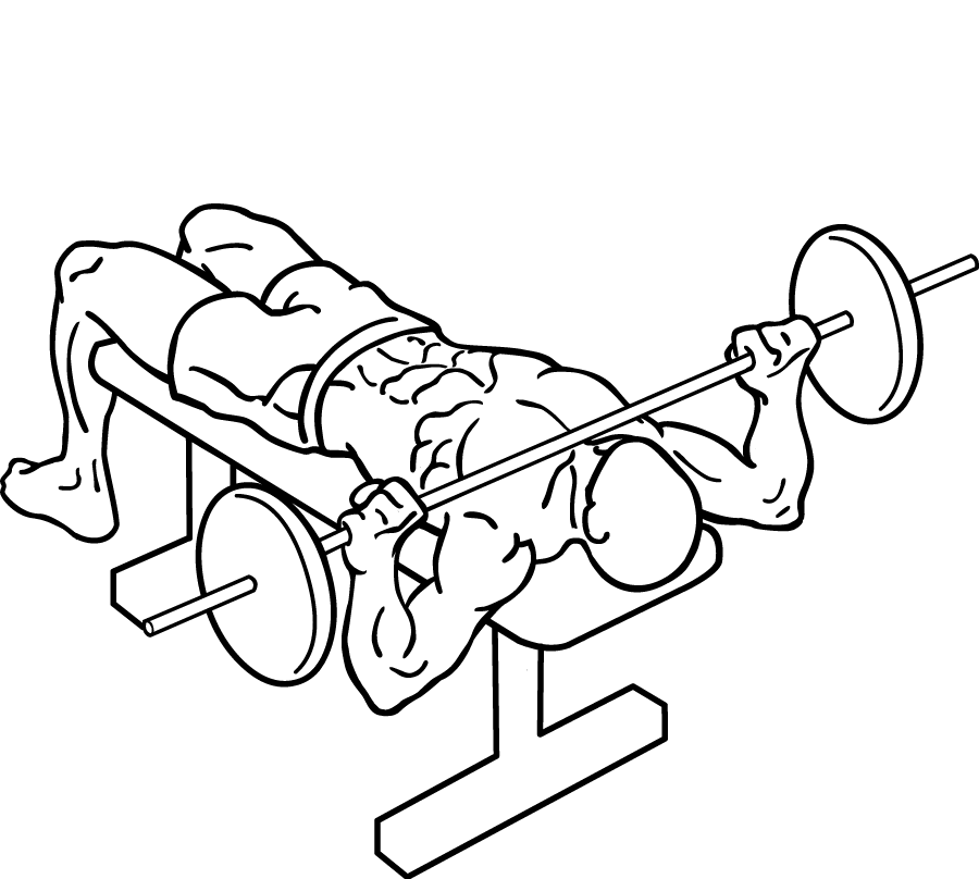 900x808 Filewide Grip Bench Press 2.png