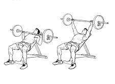 226x165 Incline Barbell Bench Press Universal Health Amp Fitness