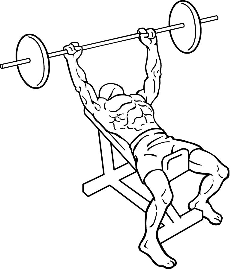 770x899 Incline Bench Press
