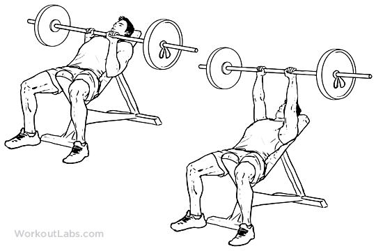 540x360 Incline Close Grip Bench Presses Workoutlabs