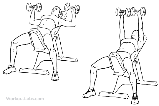 540x360 Incline Dumbbell Bench Press Illustrated Exercise Guide