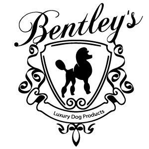 300x300 Bentley Burke (@bentley90210) Twitter