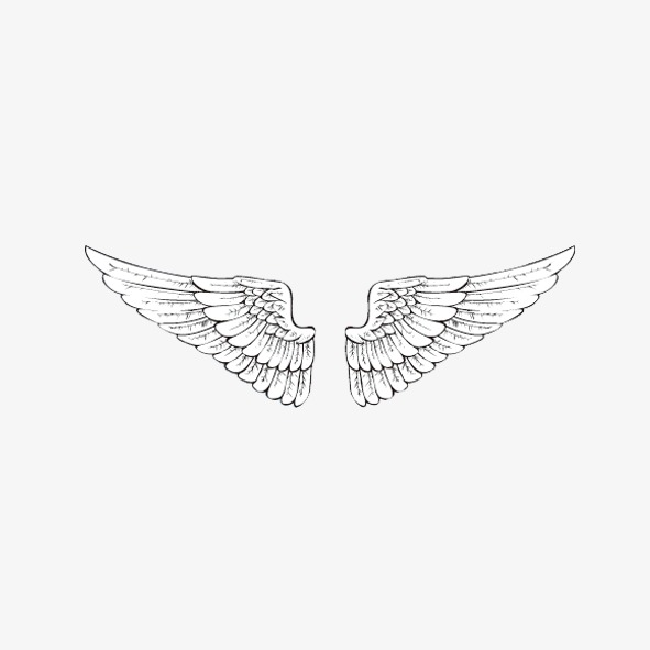 591x591 Wing, White Wings, Solid Wings Png Image For Free Download