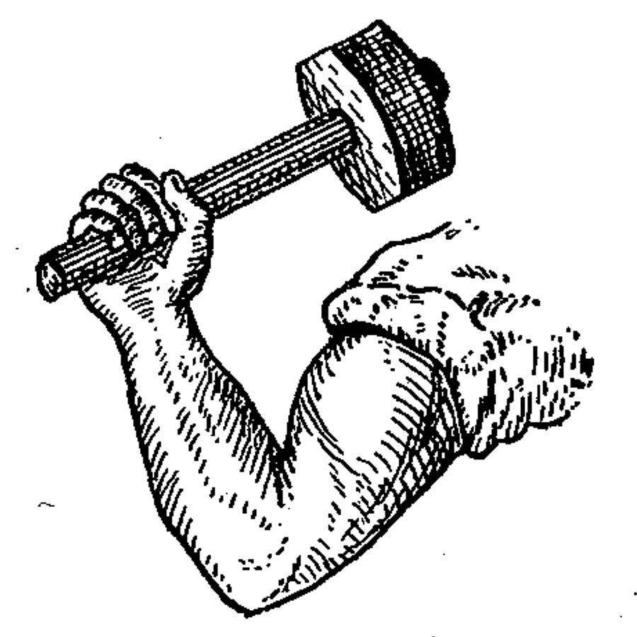 900x900 Arm Amp Hammer Logo Registered As Trademark On This Day In 1929