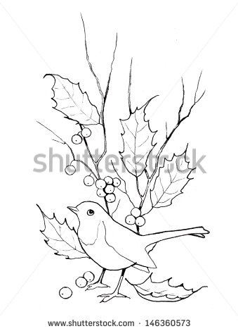 339x470 Christmas Holly With Bird Freehand Outline Drawing Some Moore