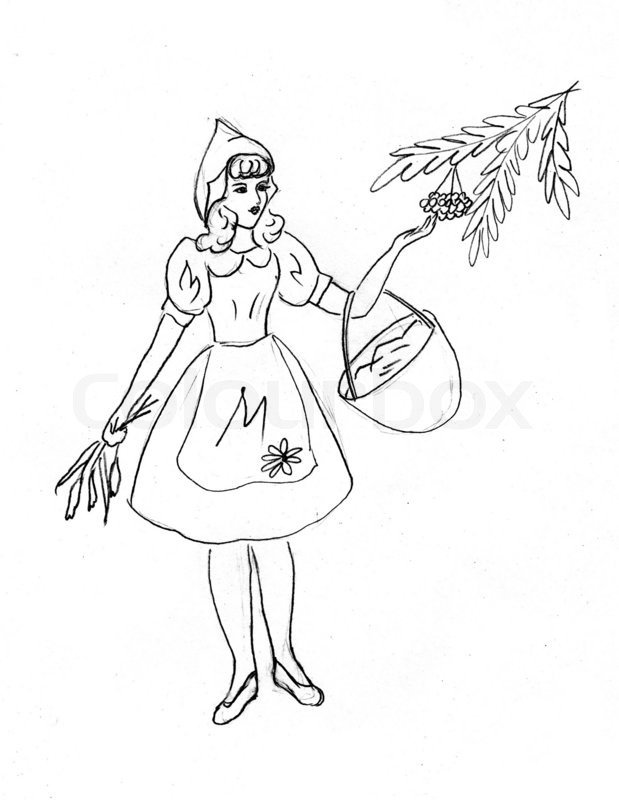 619x800 Drawing Of The Girl Collecting Berries Stock Photo Colourbox