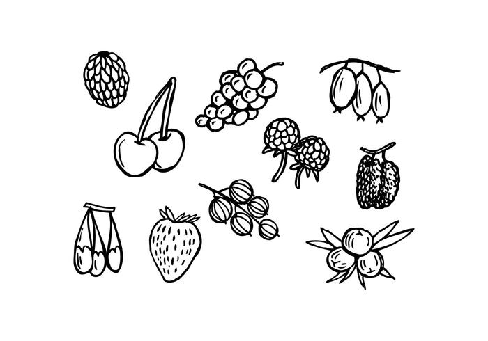 700x490 Free Berries Hand Drawn Icon Vector
