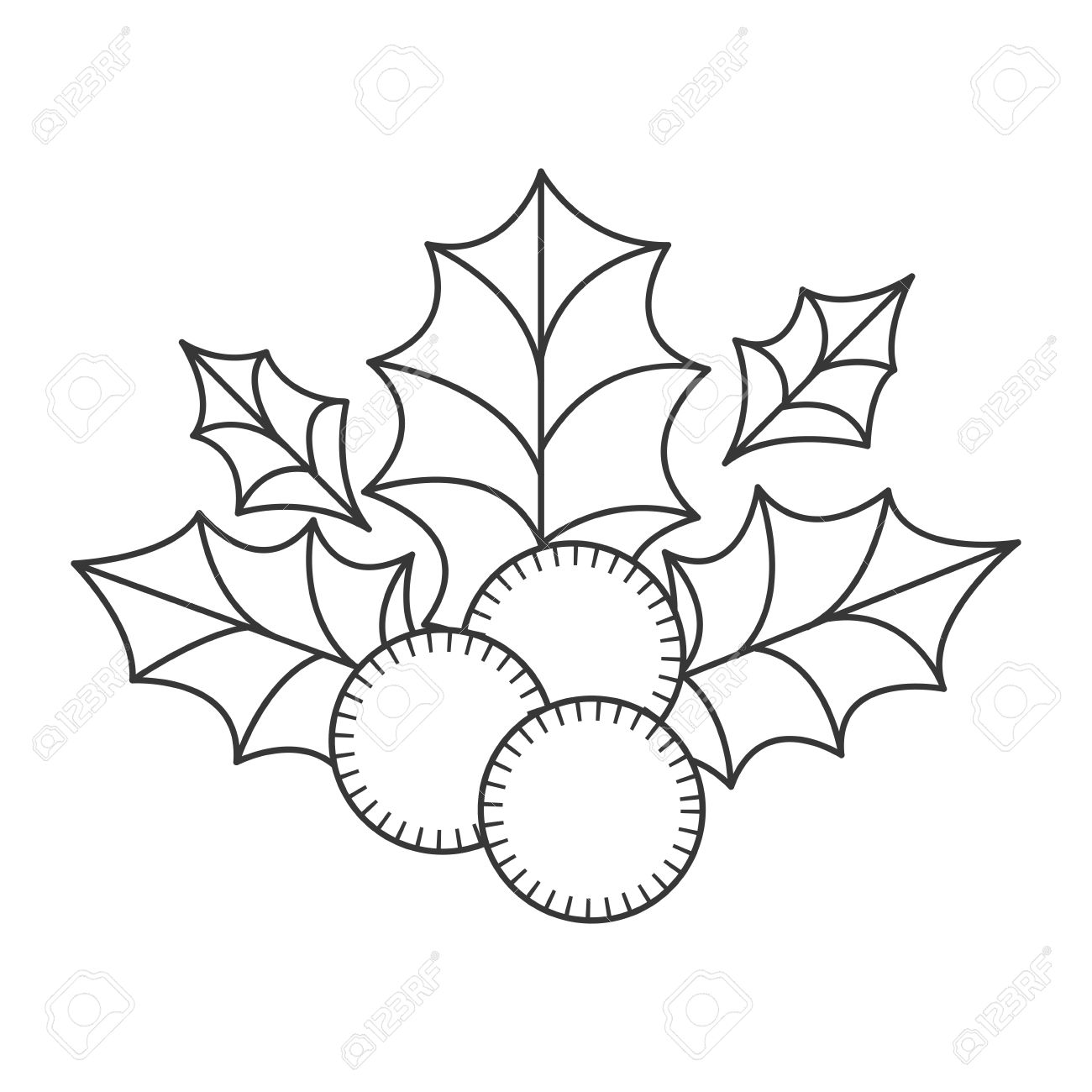 1300x1300 Holly Berry Christmas Decoration. Sketch And Draw Design. Vector