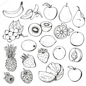 300x300 Set From Fruit And Berries Drawing Sketch Stock Vector Image Ink