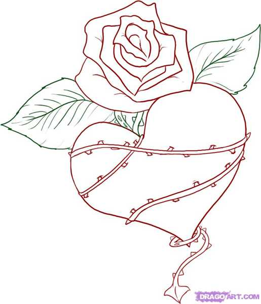 515x600 A Heart Adresse E Mail Berry Berry