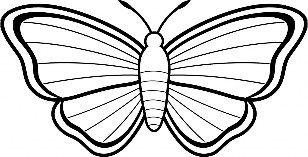 1024x524 Butterfly Drawing Easy Easy Drawings For Kids Butterfly Clipart