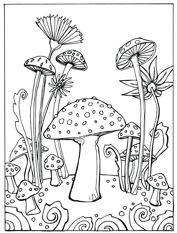 600x787 Beautiful Photo Coloring Page Best Of Flora And Fauna Sheets Short
