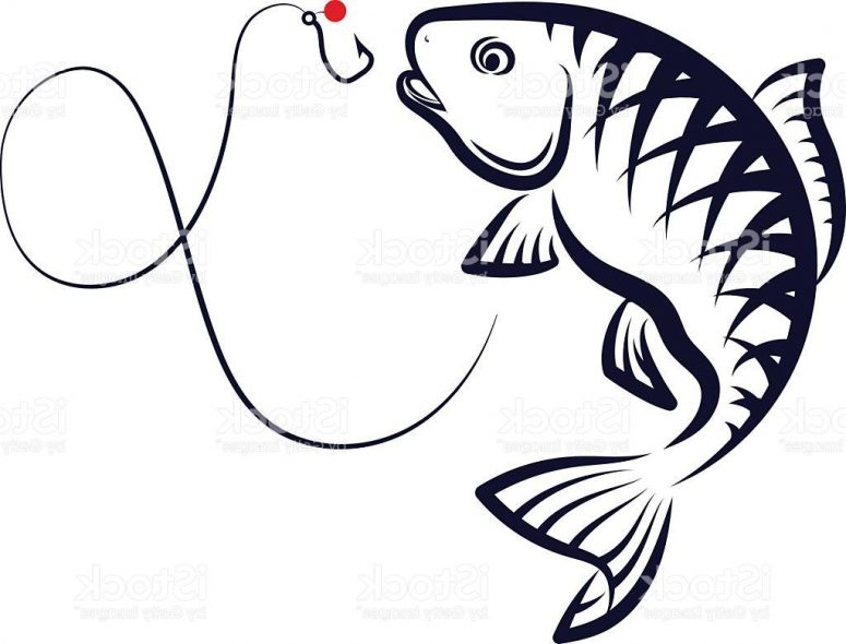 775x590 Best Free Fish Vector Drawing Cdr Free Clip Art Designs, Icons