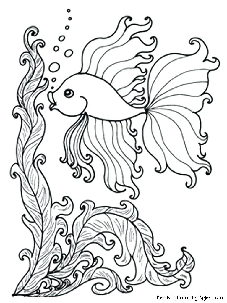 768x1024 Ocean Fish Coloring Pages Free Download 121 Amusing Betta Page