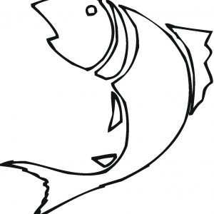 Betta Fish Drawing At Getdrawings Com Free For Personal Use Betta