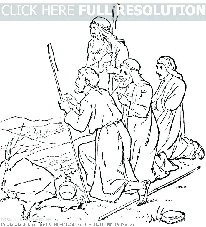 700x772 Bible Story Coloring Books Plus Printable Bible Story Coloring