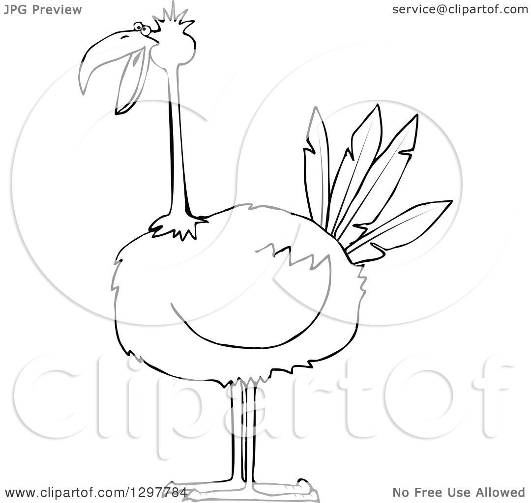 1080x1024 Clipart Of A Black And White Big Bird
