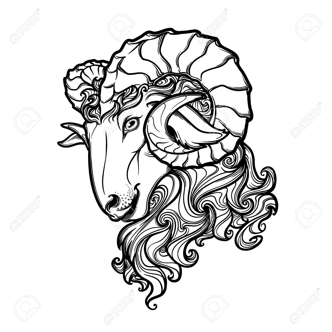 1300x1300 Side View Of A Ram Head With Big Twisted Horns. Intricate Hand