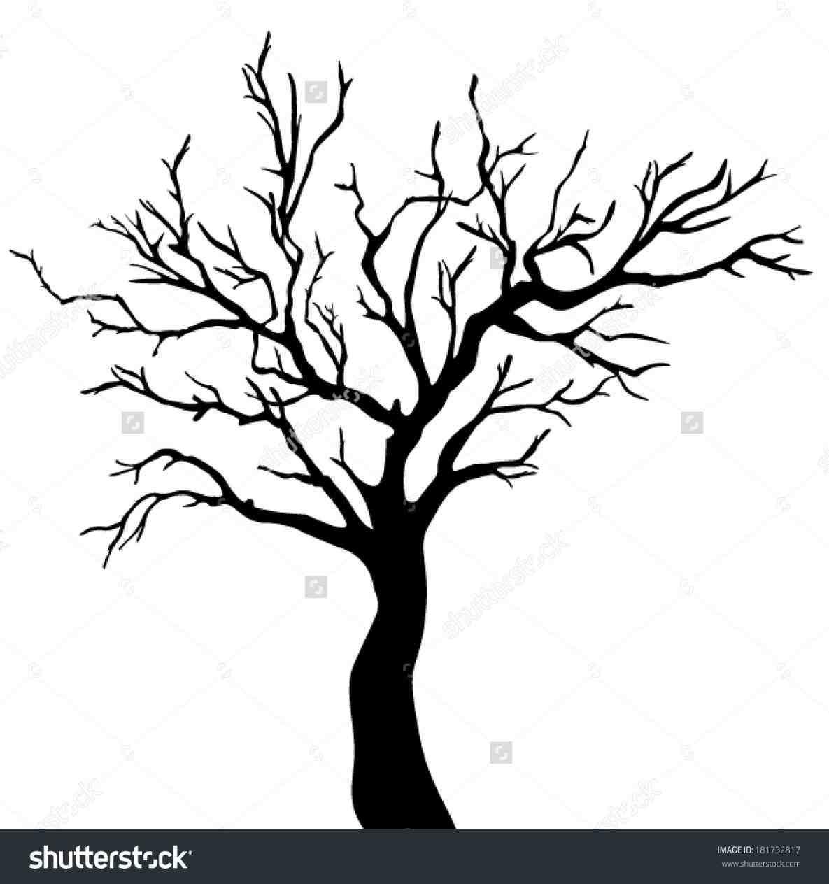 1185x1264 Big Dead Tree Drawing Ngorong.club Bare Trees