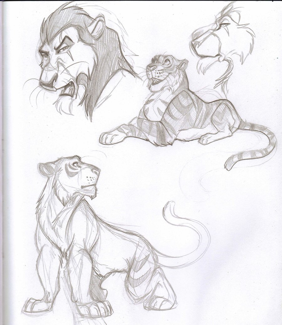 900x1039 Big Cat Sketches By Ifus