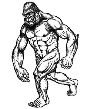 300x360 140 Best Bigfoot, The Yetiest Sasquatch Images