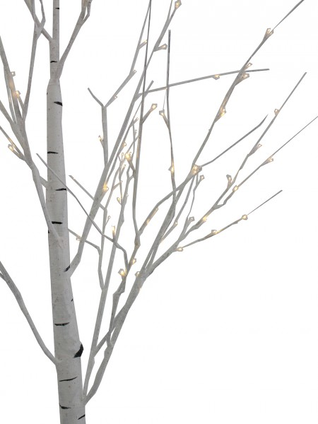 Brand new Birch Tree Drawing at GetDrawings.com | Free for personal use  FR02