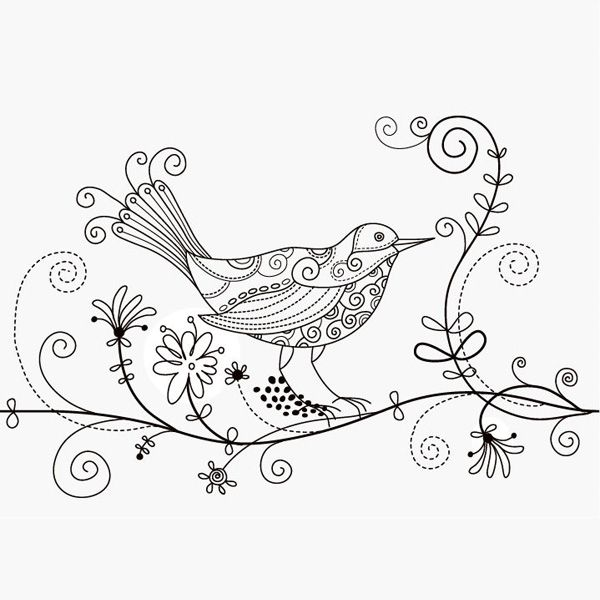 Bird And Flower Drawing
