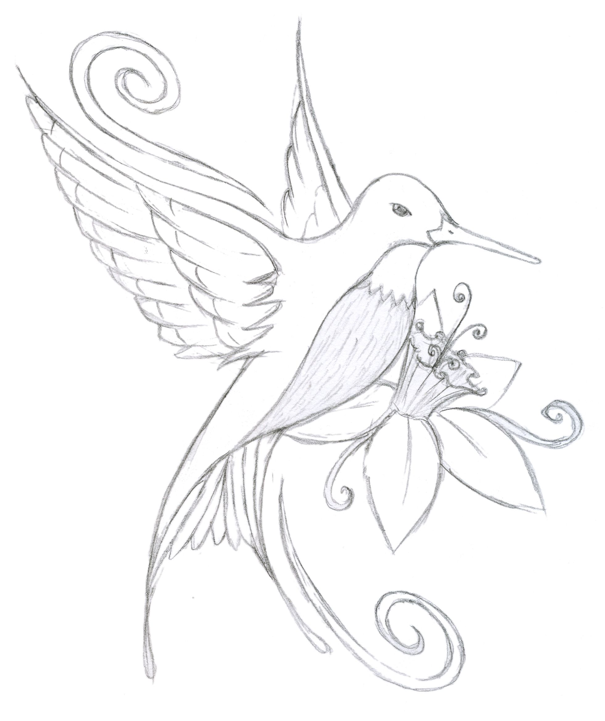 Bird And Flower Drawing at GetDrawings.com | Free for personal use ...