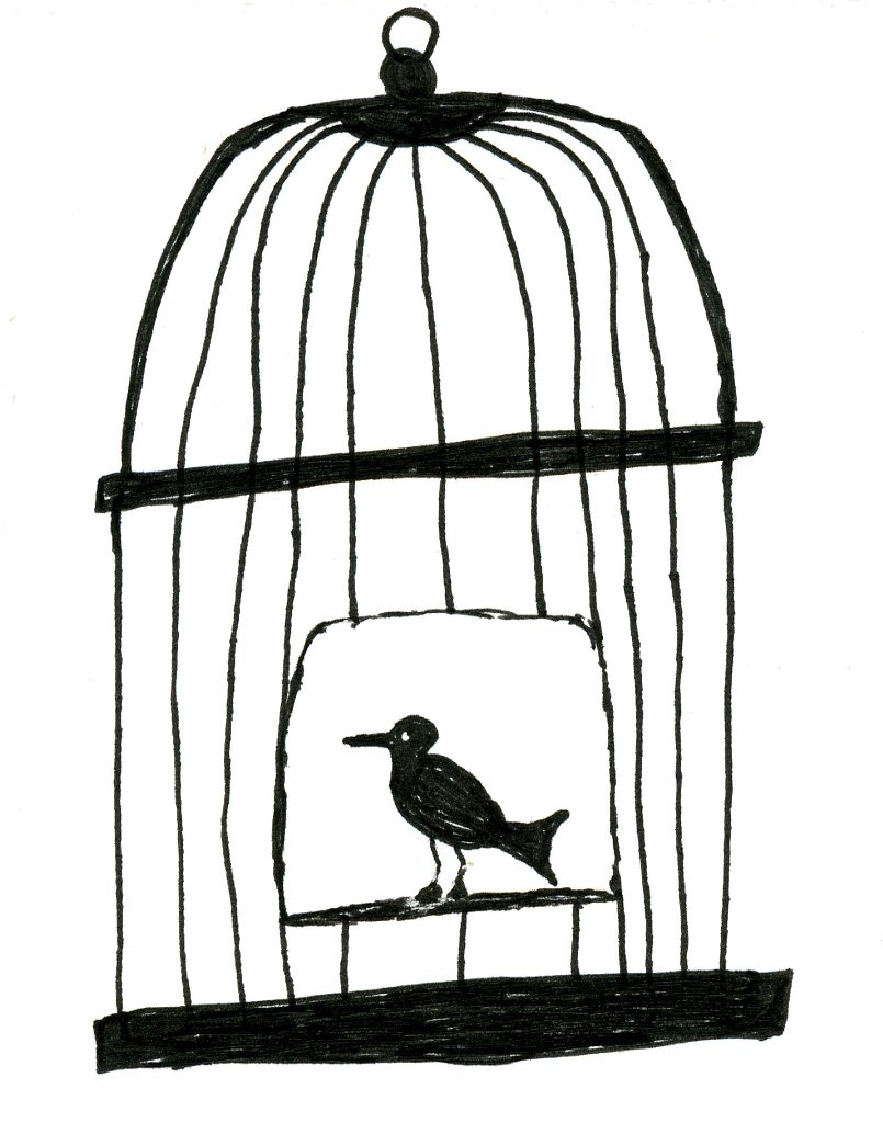 805x1034 Bird In Cage Drawing How To Draw A Bird Cage