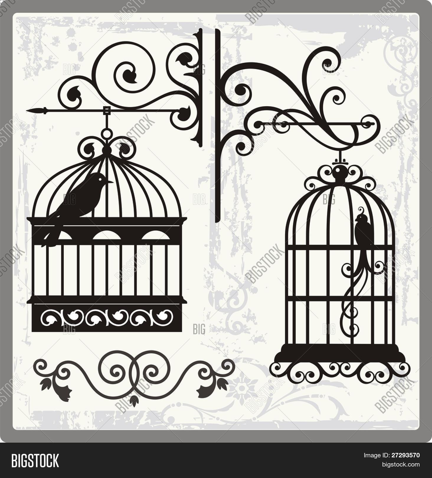 1464x1620 Drawn Birdcage Ornamental