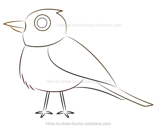 510x420 How To Draw A Cartoon Robin