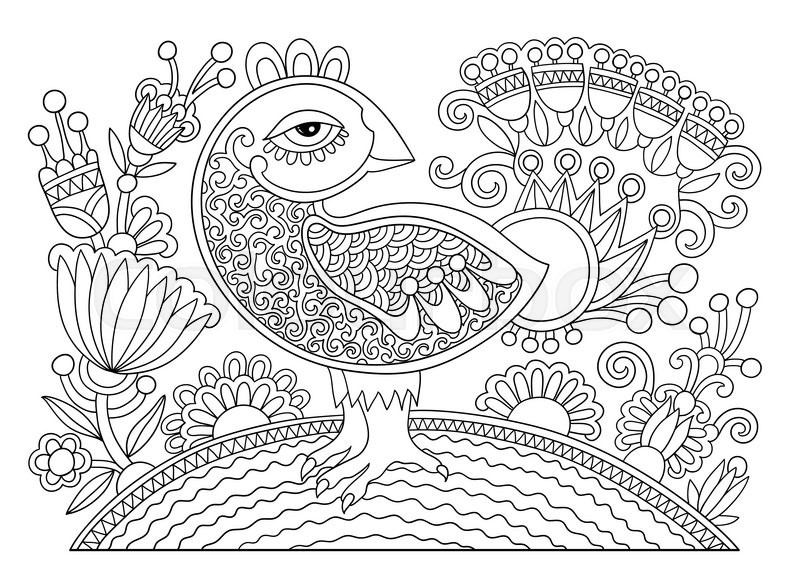 800x585 Original Black And White Line Drawing Page Of Coloring Book Bird