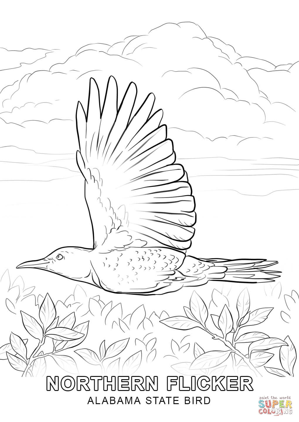 1020x1440 Alabama State Bird Coloring Page Free Printable Pages