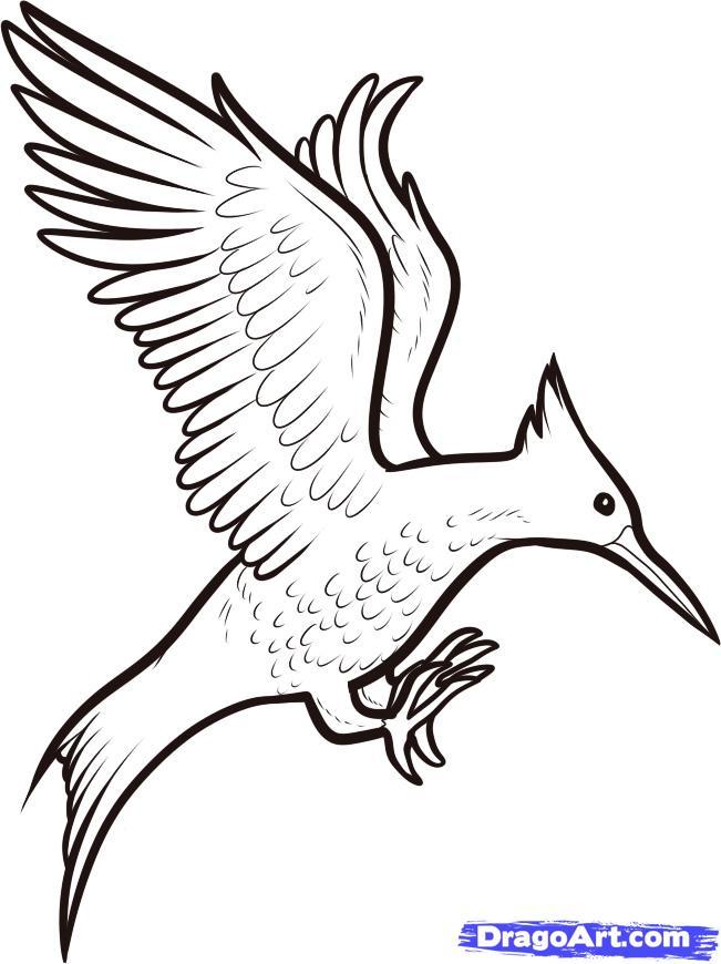 651x870 Cartoon Birds Flying Many Interesting Cliparts