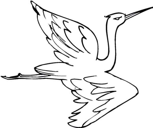600x502 Crane Bird Netart