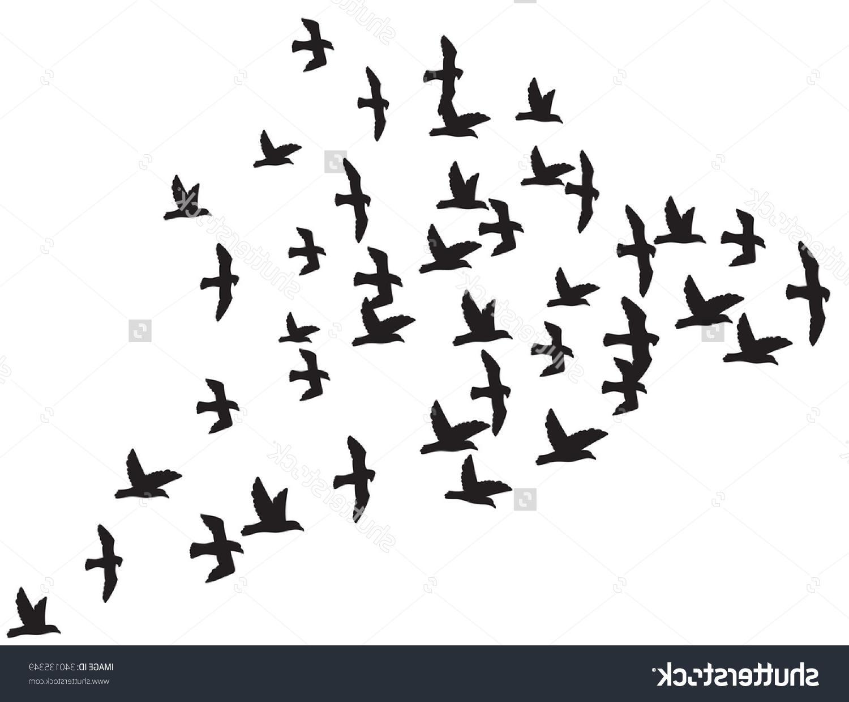 1500x1239 Best Stock Vector Flock Of Flying Birds Drawing