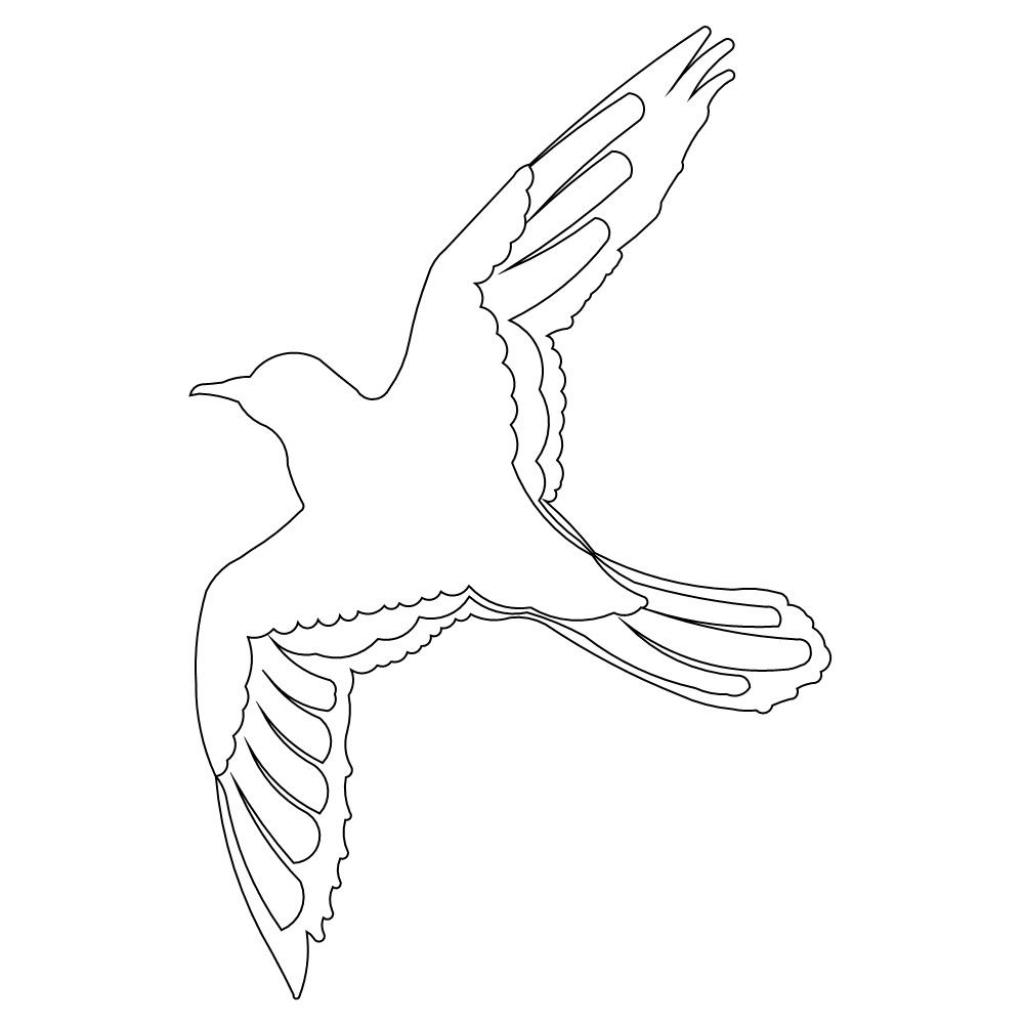 1024x1024 Easy To Draw Bird Flying