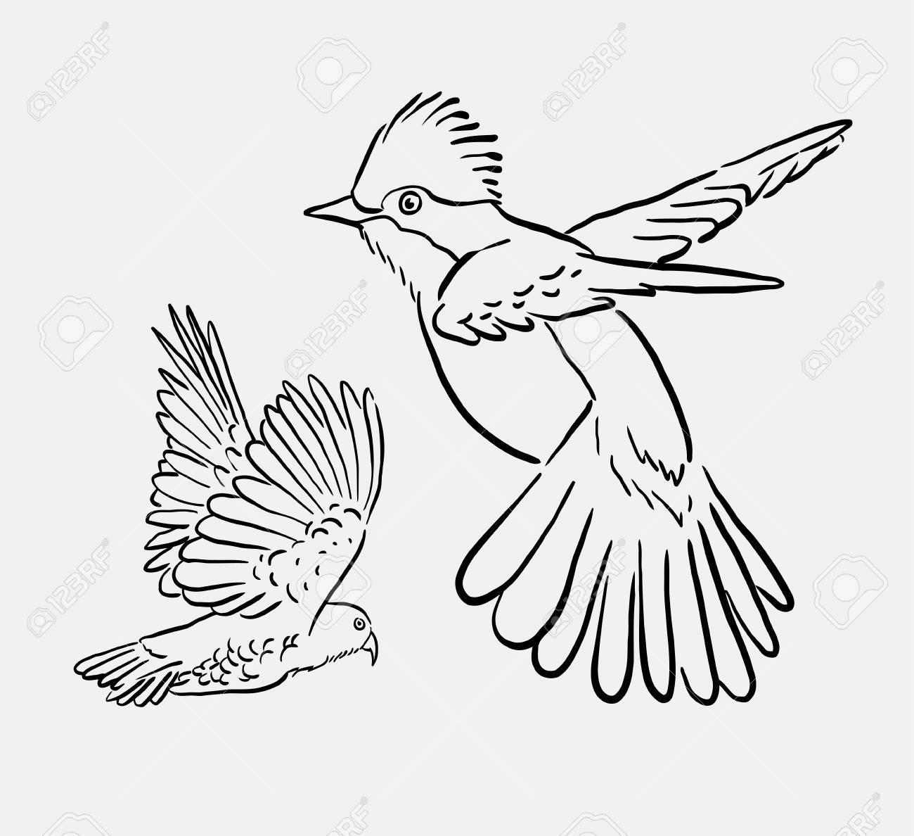 1300x1188 Bird Animal Flying Drawing. Good Use For Symbol, Logo, Web Icon