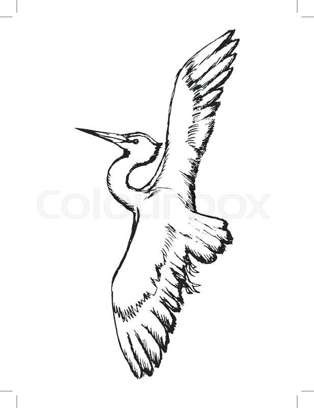 616x800 Heron In Flight, White Heron, Beauty In Nature, Flying Heron