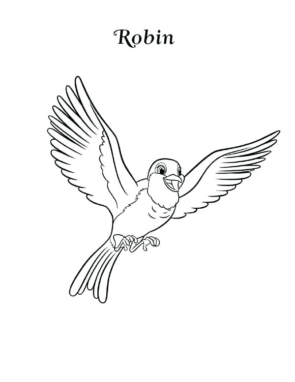 600x776 Robin Bird Coloring Pages Bird Coloring Pages Plus Drawing Robin
