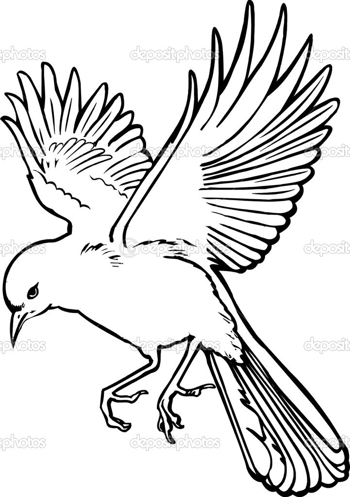721x1023 Bird Flying Illustration Stock Images