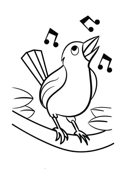 400x566 coloring pages for kids learn to color birds how to draw