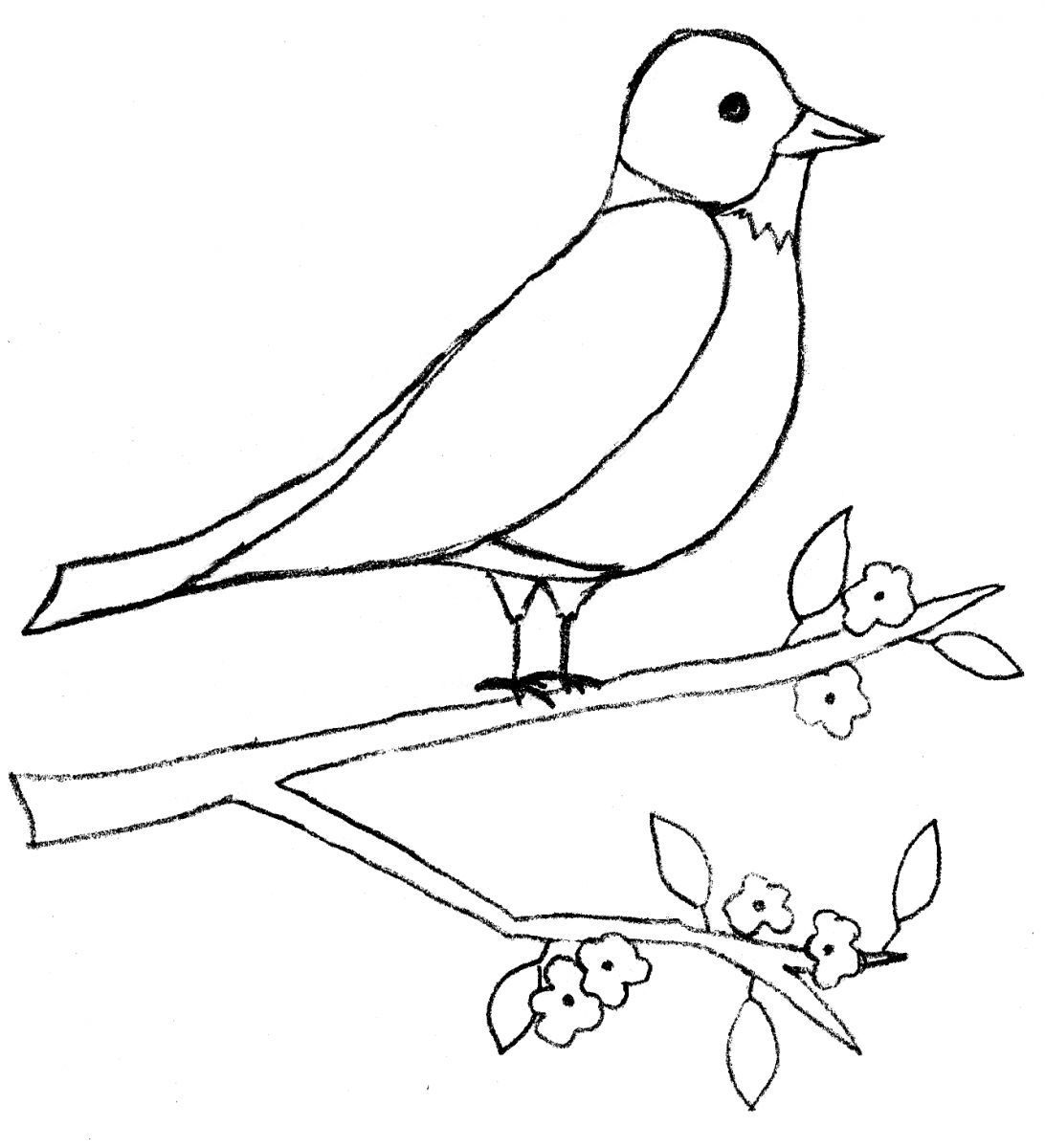 Bird Drawing Images at GetDrawings.com | Free for personal use Bird ...