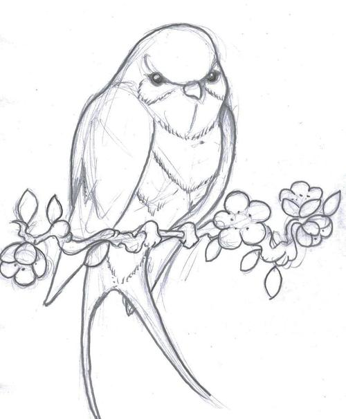 500x606 A Bird Tattoo Drawing